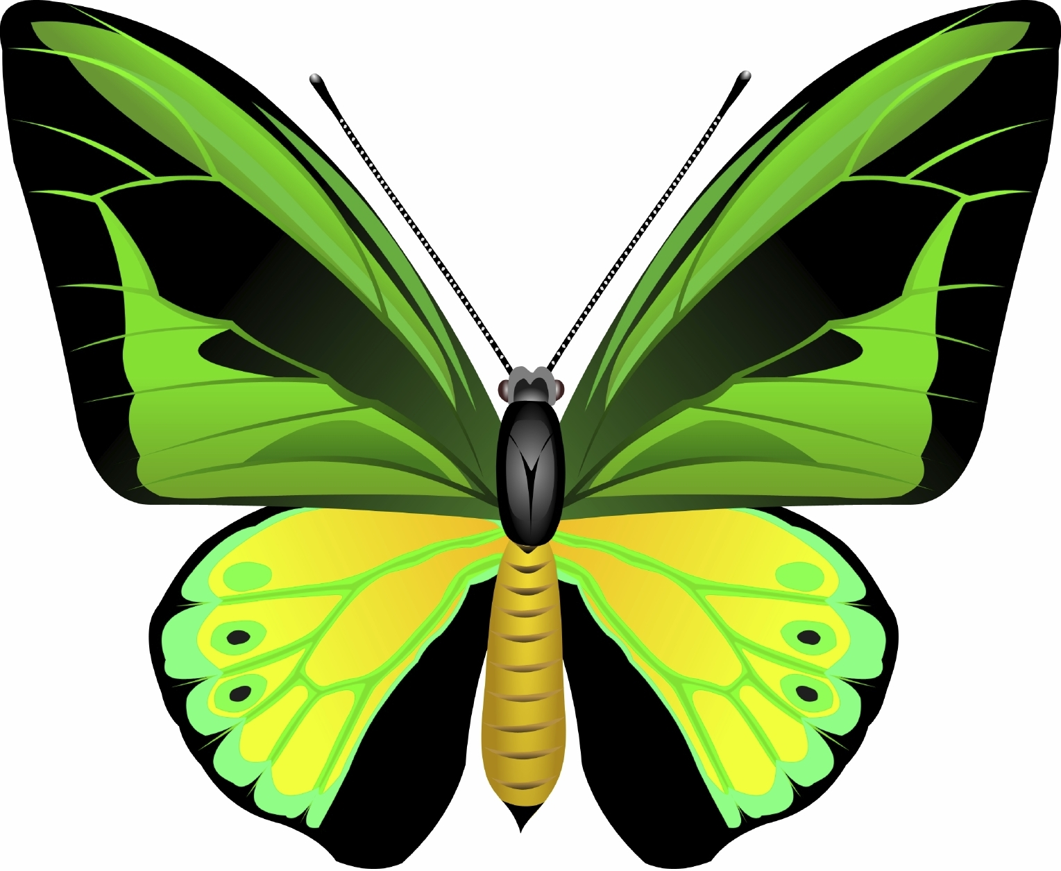 Butterfly biodiveristy offsetting